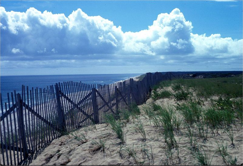 Cape Cod National Seashore near Wellfleet, MA
