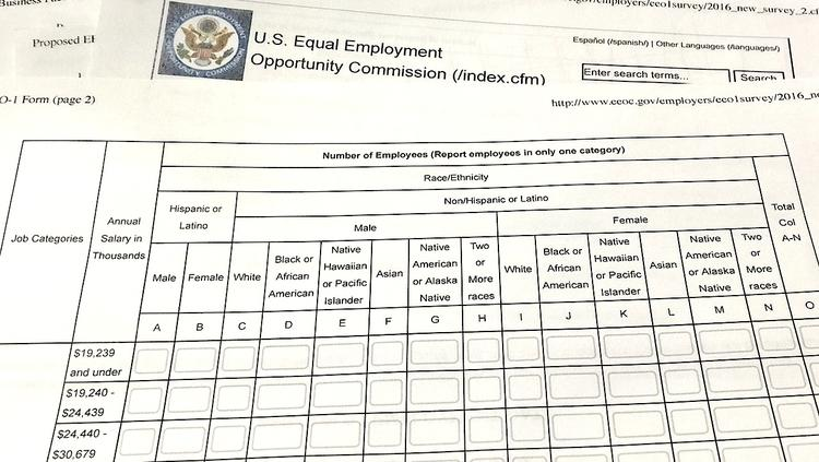 Here\'s an Enormous Spreadsheet the EEOC Wants to Make Employers Fill ...
