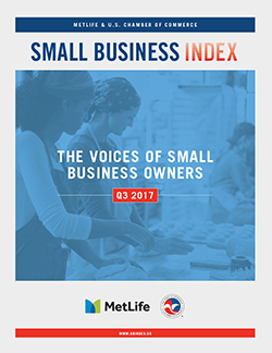Small Business Index Cover