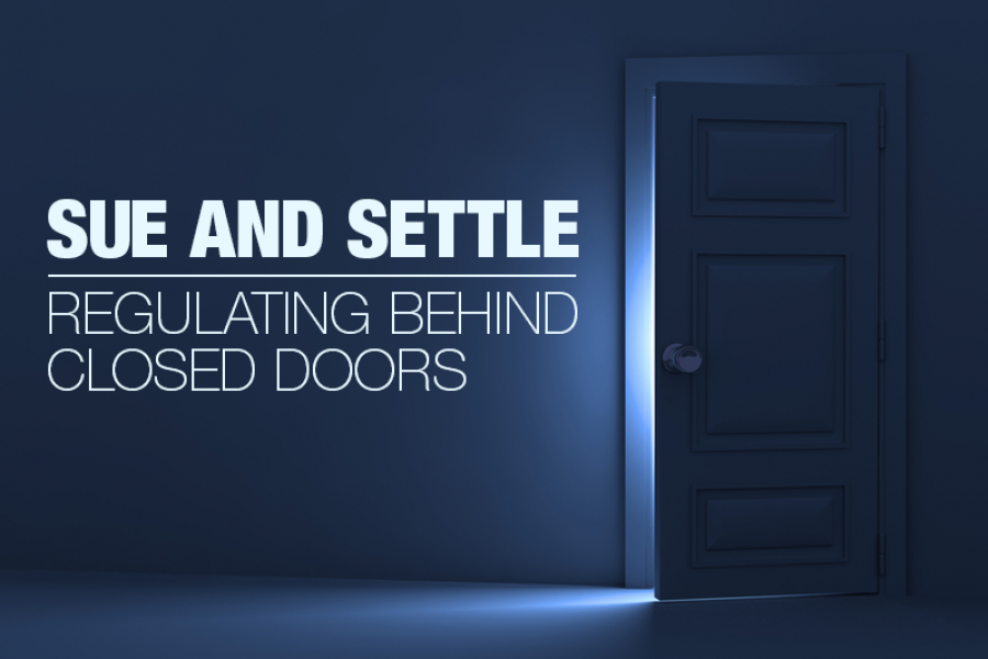 Sue and Settle: Regulating Behind Closed Doors