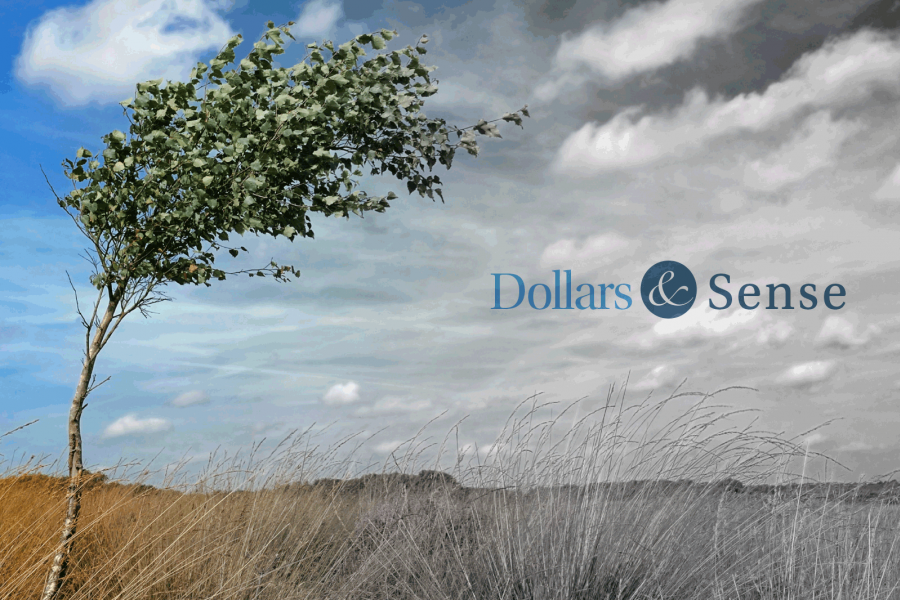 Dollars and Sense Jan 2016 Headwinds on the Horizon, image a tree in the wind