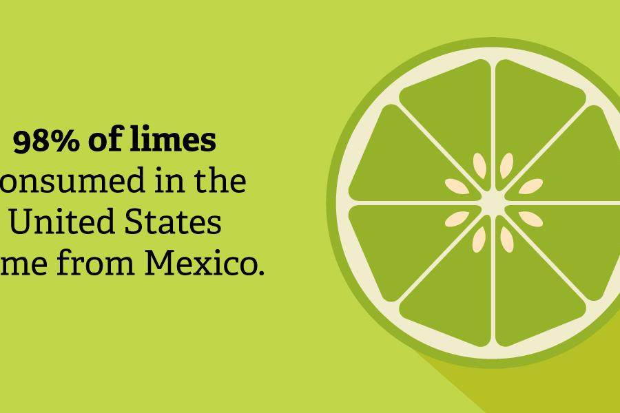 98% of Limes