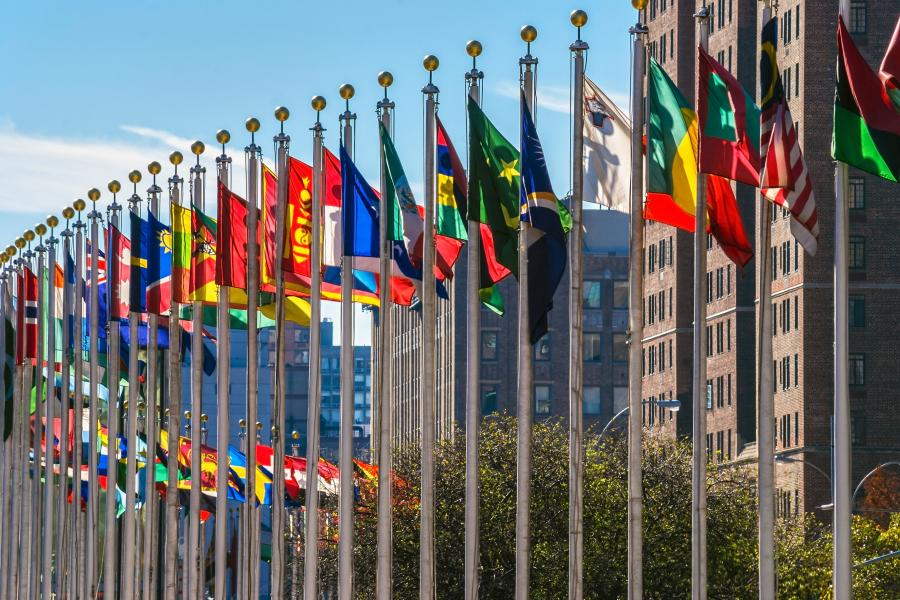 United Nations Flags, NYC