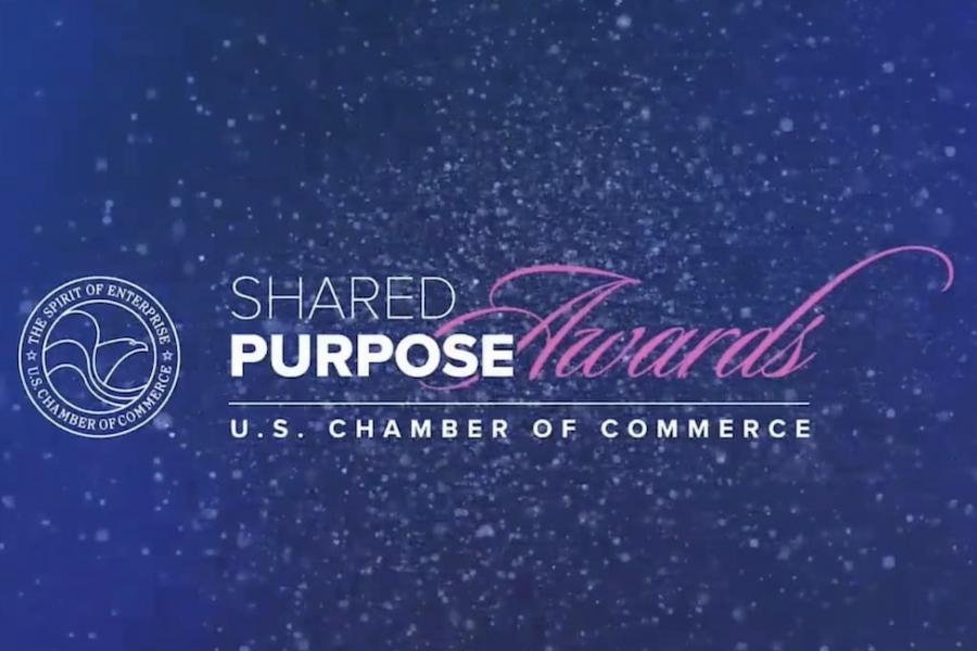 Share Purpose Awards 2021