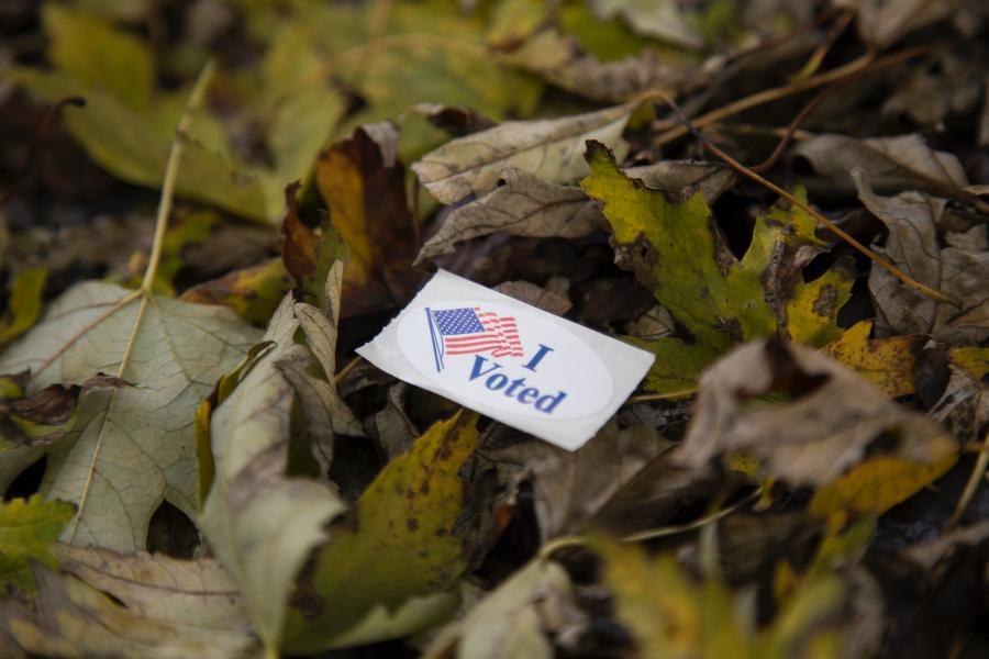 'I Voted' sticker on leaves.