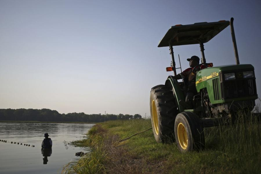 A tractor along the bank of a catfish pond in Uniontown, Alabama.