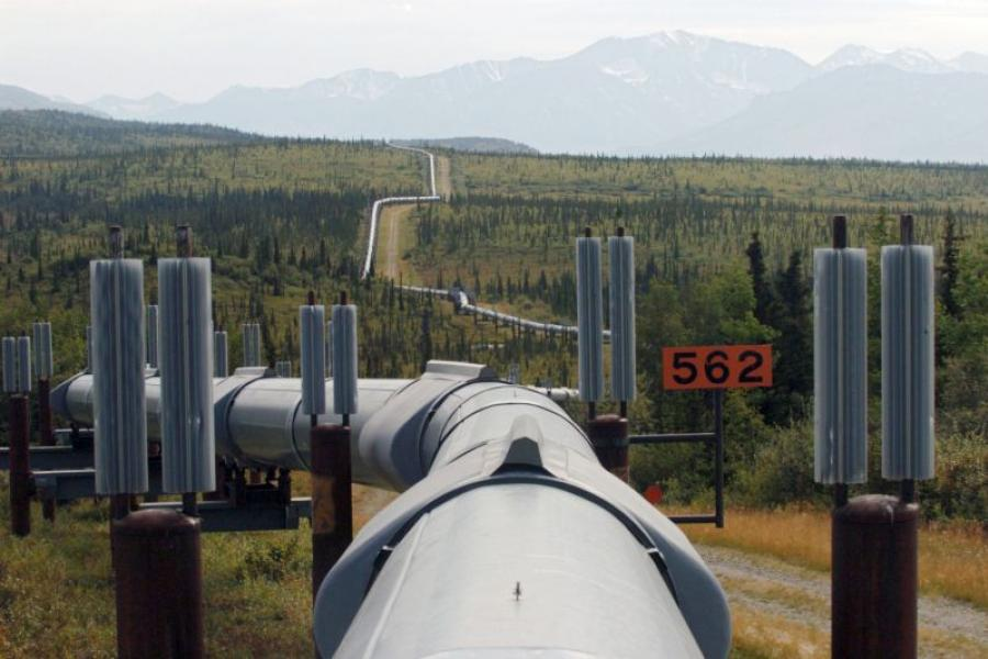 A section of the Trans-Alaska Pipeline near Delta Junction, AK.