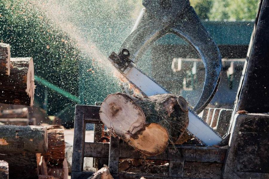 Saw cutting wood