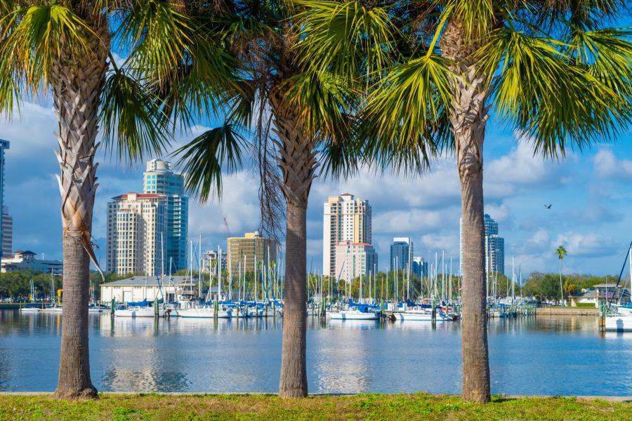 Port in St. Petersburg, Florida