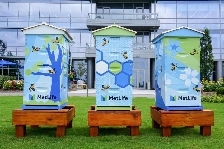 MetLife bee hives