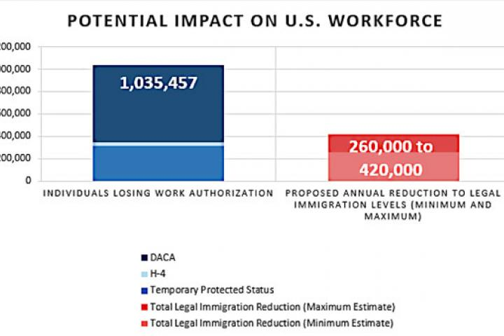 Immigration Workforce Impact