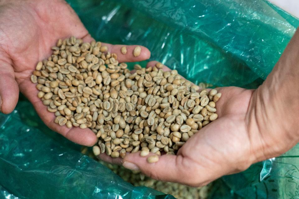 Caffe Amouri beans