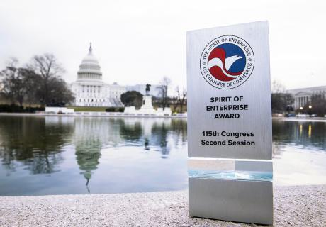 Spirit of Enterprise Award with U.S. Capitol in background