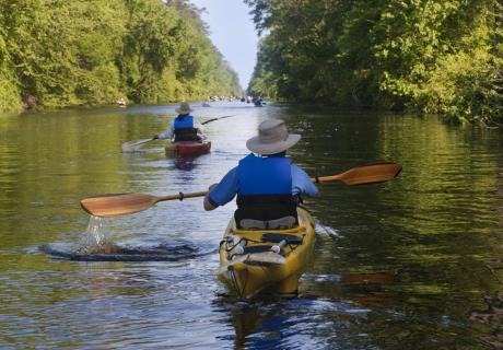 Kayakers in North Carolina's Great Dismal Swamp National Wildlife Refuge. Photo credit: U.S. Army Corps of Engineers.