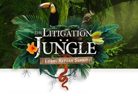 Litigation Jungle 2017 ILR Key Graphic Image
