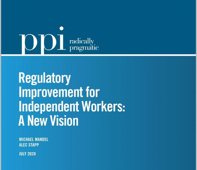 PPI Report Cover