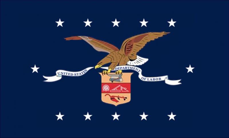 DOL Flag