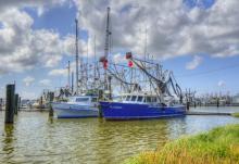 Louisiana businesses
