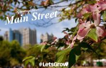Greetings From Main Street Postcard