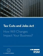 RSM Tax Guide