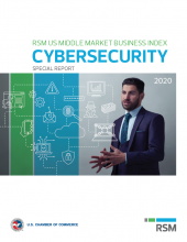 MMBI Special Report cover image - Cybersecurity Report