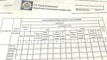 EEOC's proposed pay data form.