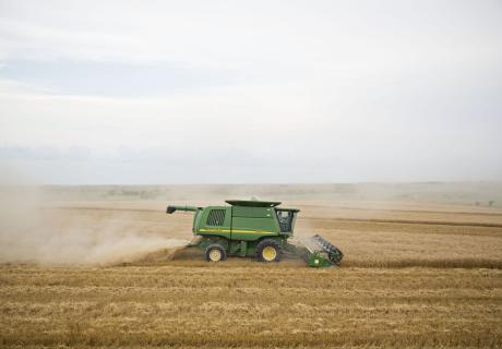 A combine harvests hard red winter wheat in Zurich, KS.