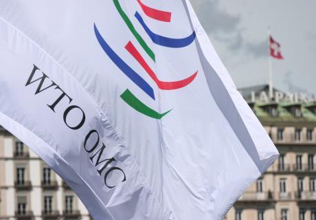 World Trade Organization flag flying in Switzerland.