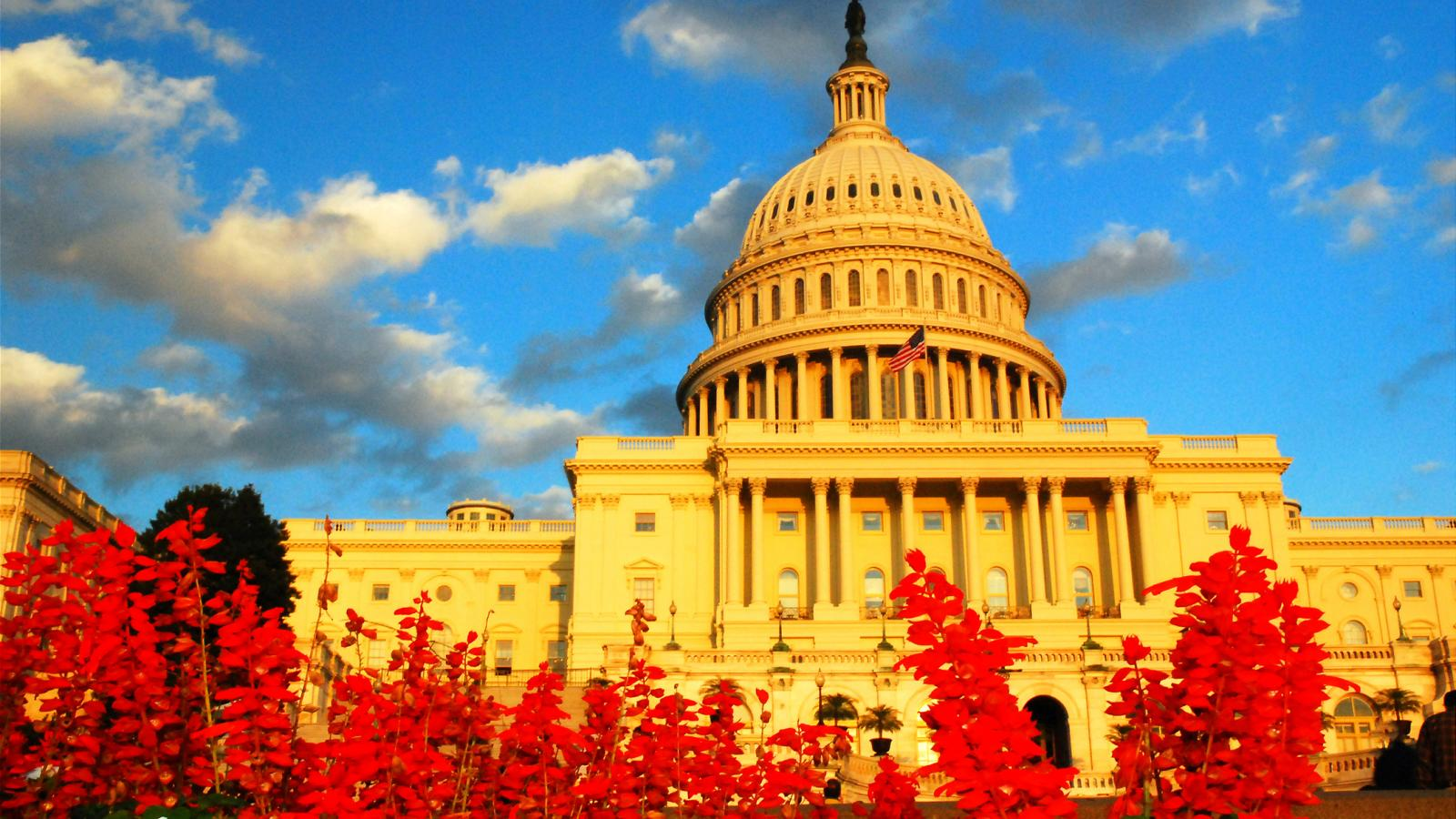 Capitol Hill Autumn