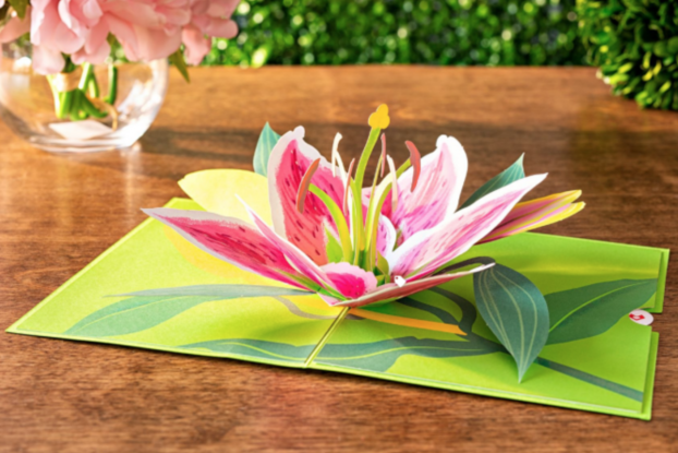 Pop-up greeting card displayed on a table by Lovepop.