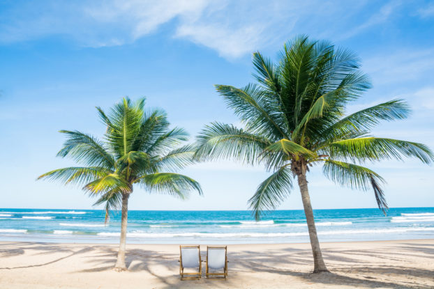 two lounge chairs on a beach with palm trees